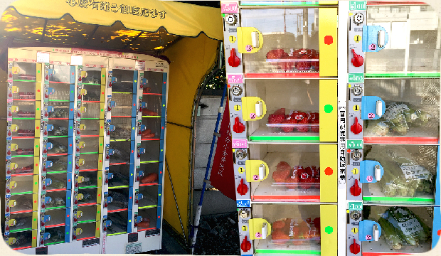 鴨下農園_野菜の自動販売機_PARITALY